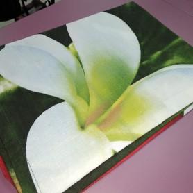 Наволочка 50 * 70 см бязь хлопок темно-зеленая Цветы (DM2002029TT)