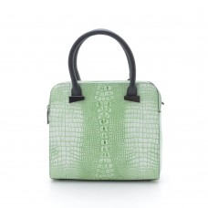 Женская сумка светло-зеленая (DM1612CL)